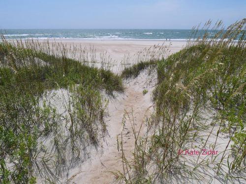 LB dunes